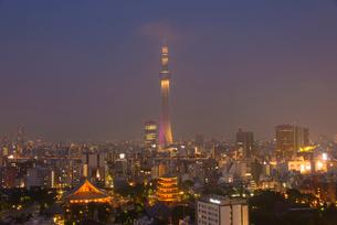 浅草寺と東京スカイツリーライトアップ(雅)の写真素材 [FYI02837046]