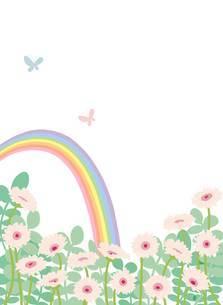 虹とガーベラと蝶のイラスト素材 [FYI02837075]