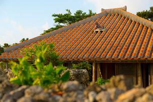 シーサーのある竹富島の民家の写真素材 [FYI02837081]