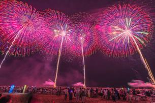 柏崎花火大会の写真素材 [FYI02837143]