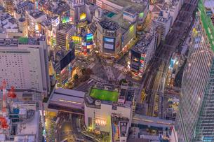 渋谷夜景空撮の写真素材 [FYI02837214]
