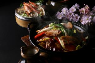 回鍋肉の写真素材 [FYI02837249]