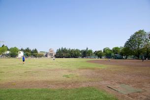 明治神宮外苑軟式野球場の写真素材 [FYI02837361]