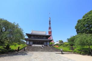 増上寺の写真素材 [FYI02837865]