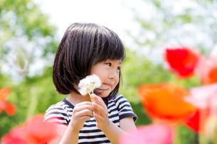 公園の花と女の子の写真素材 [FYI02837929]