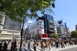 渋谷駅前の写真素材 [FYI02838002]