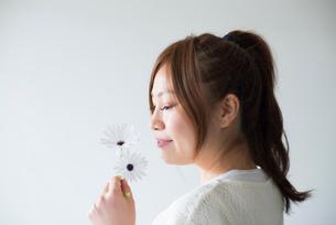 白いデイジーの香りを嗅ぐ女性の写真素材 [FYI02838180]