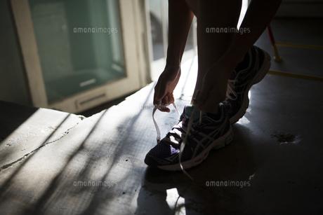 スニーカーの靴紐を結んでいる女性の写真素材 [FYI02838319]