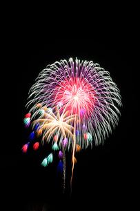 片貝まつり花火大会の写真素材 [FYI02838423]