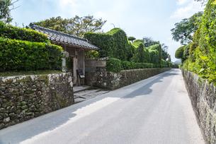 石垣と生け垣を見る知覧武家屋敷群の通りの写真素材 [FYI02838447]