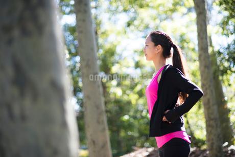 森の中にいる女性の写真素材 [FYI02838464]