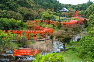 トンネル状に赤い鳥居が立ち並ぶ高山稲荷神社風景の写真素材 [FYI02838495]