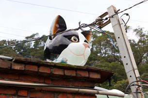 台湾、猫村、巨大なオブジェの写真素材 [FYI02838550]