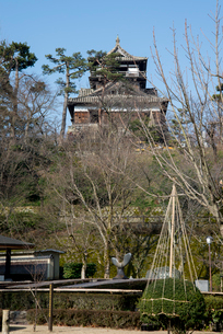 丸岡城の写真素材 [FYI02838565]
