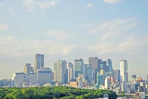 新宿の高層ビルと代々木公園の写真素材 [FYI02838735]