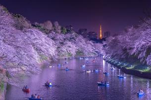 千鳥ヶ淵の桜ライトアップの写真素材 [FYI02838827]