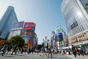 渋谷スクランブル交差点の写真素材 [FYI02838851]