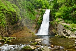 秋保大滝の写真素材 [FYI02838947]
