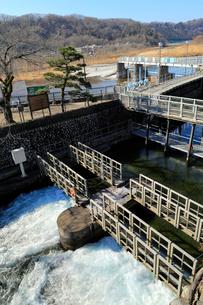羽村取水堰の水門の写真素材 [FYI02838962]