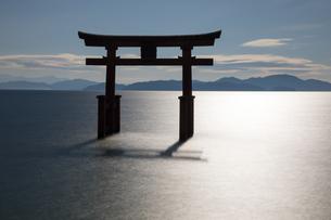 逆光に輝く白髭神社大鳥居の写真素材 [FYI02839066]