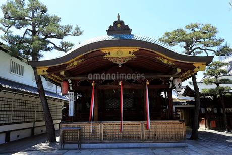 5月 恵比須神社-京都宮川町-の写真素材 [FYI02839203]