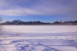 阿寒国立公園の雪景色の写真素材 [FYI02839224]