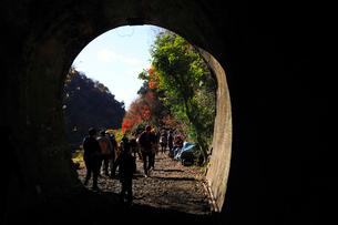 12月 紅葉の愛岐トンネル群 近代化産業遺産の写真素材 [FYI02839245]
