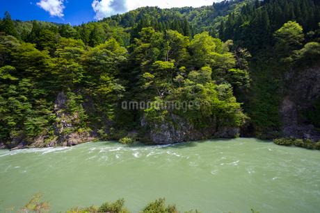 飛越峡,真背戸の滝の写真素材 [FYI02839263]