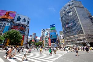 渋谷駅前の写真素材 [FYI02839353]