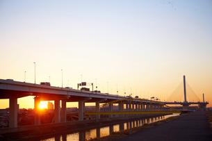 夜明けの首都高速道路の写真素材 [FYI02839428]