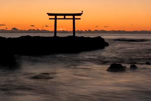 大洗海岸の神磯の鳥居に上る朝日の写真素材 [FYI02839448]