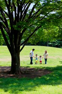 公園で手をつなぐ親子の写真素材 [FYI02839499]