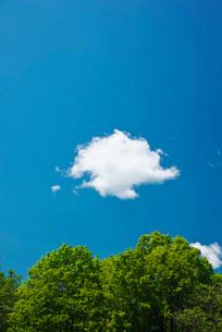 雲の写真素材 [FYI02839600]