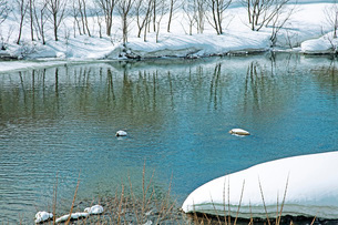 冬の本道寺地区の写真素材 [FYI02839611]