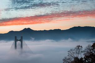 秩父公園橋と雲海の写真素材 [FYI02839612]