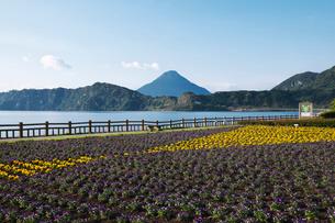 池田湖と開聞岳の写真素材 [FYI02839741]
