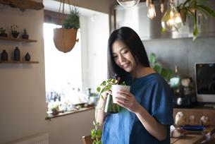 多肉植物にスプレーをしている女性の写真素材 [FYI02839805]