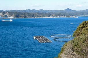 マグロの養殖場が設けれた串本湾の写真素材 [FYI02839993]