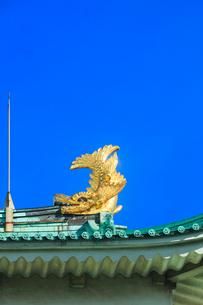 名古屋城天守閣 金鯱の写真素材 [FYI02840101]