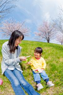 桜の咲く土手でお弁当を食べる母親と娘の写真素材 [FYI02840231]
