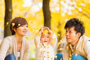 秋の公園で遊ぶ親子の写真素材 [FYI02840234]