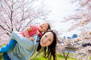 桜の咲く土手で遊ぶ母親と娘の写真素材 [FYI02840237]