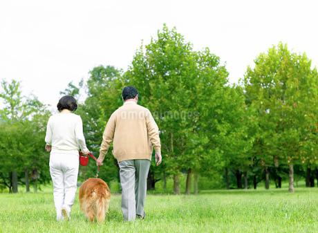 緑と日本人の中高年夫婦と犬の写真素材 [FYI02840825]