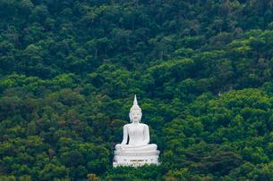 タイ  コラート ワット・テープピタックプナラムの写真素材 [FYI02842071]