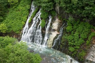 新緑の白髭の滝の写真素材 [FYI02842247]