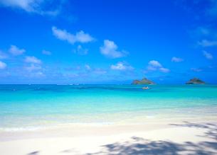 ラニカイビーチ カイルア ハワイの写真素材 [FYI02842256]