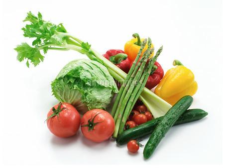 野菜の写真素材 [FYI02842481]