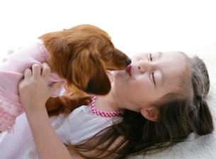 犬と遊ぶ女の子の写真素材 [FYI02844288]