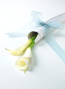 紙にくるまれた花束の写真素材 [FYI02844370]