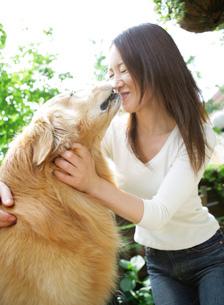 犬と笑顔の女性の写真素材 [FYI02845297]